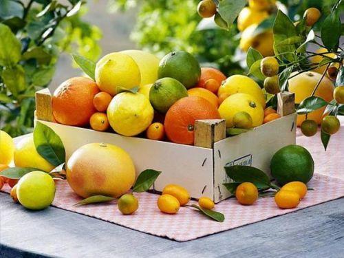 农产品品牌打造之农产品品牌注册重要吗?-1