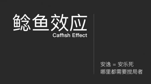 鲶鱼效应是什么意思-1